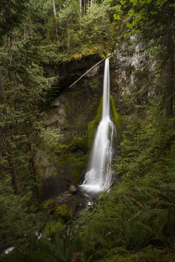 Ultra granangular de las caídas de Marymere, parque nacional olímpico imagen de archivo libre de regalías