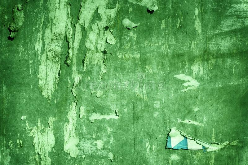 Ultra green Torn poster after vote on tin textured wall. Ripped newspaper stock images