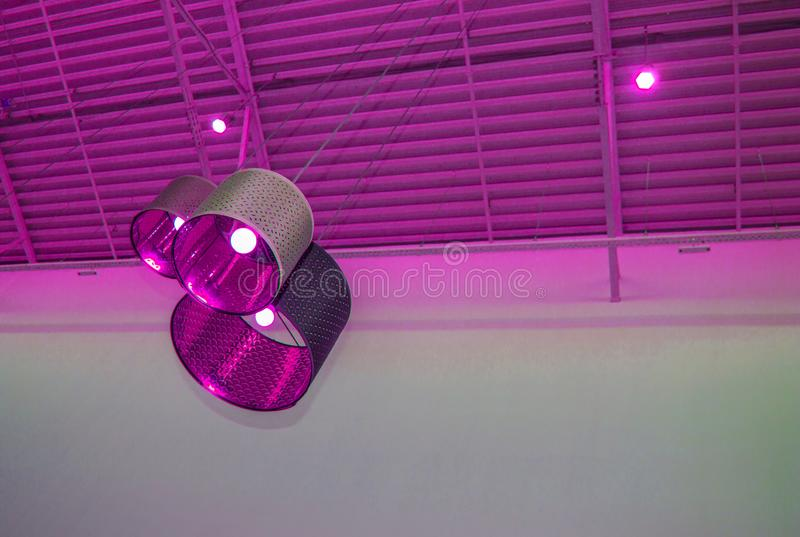 Ultra-modern loft style in purple toned color decorative lamps and lampshades hang on long rope, industrial ceiling, interior royalty free stock photography