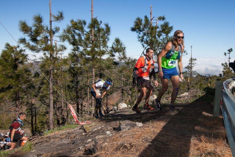 Ultra Transgrancanaria Maraton 2014. photographie stock