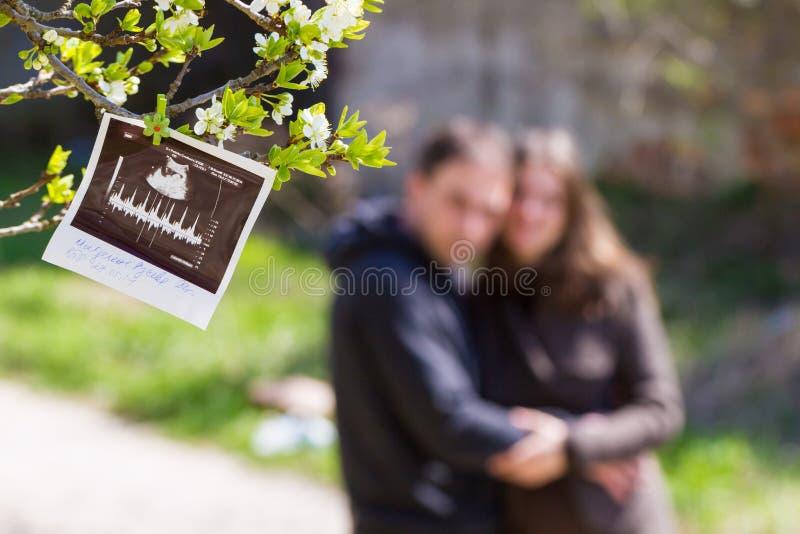 Ultradźwięków rodzice i obrazek fotografia royalty free