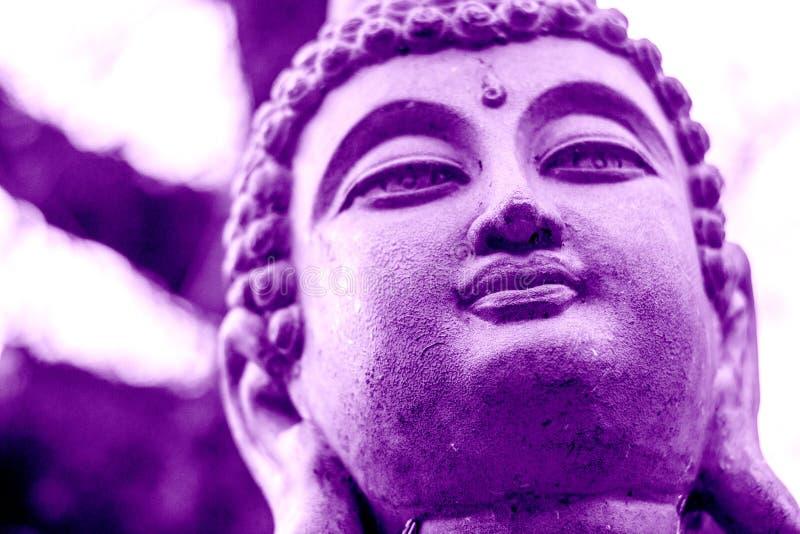 Ultrafioletowy Buddha z drzewną koroną zdjęcie stock