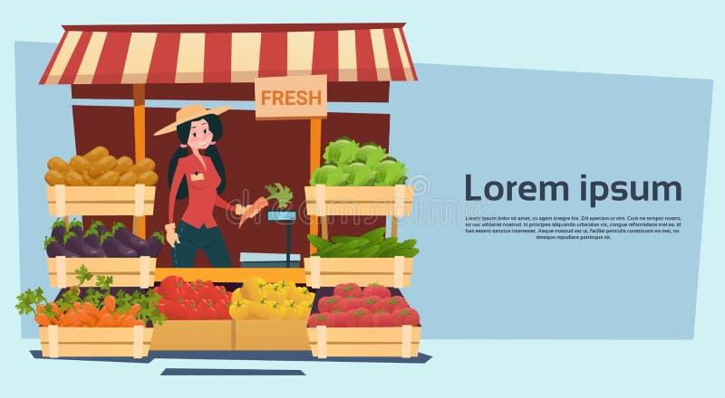 Ultramarinos orgánico de las legumbres de frutas de Eco del mercado de la granja stock de ilustración