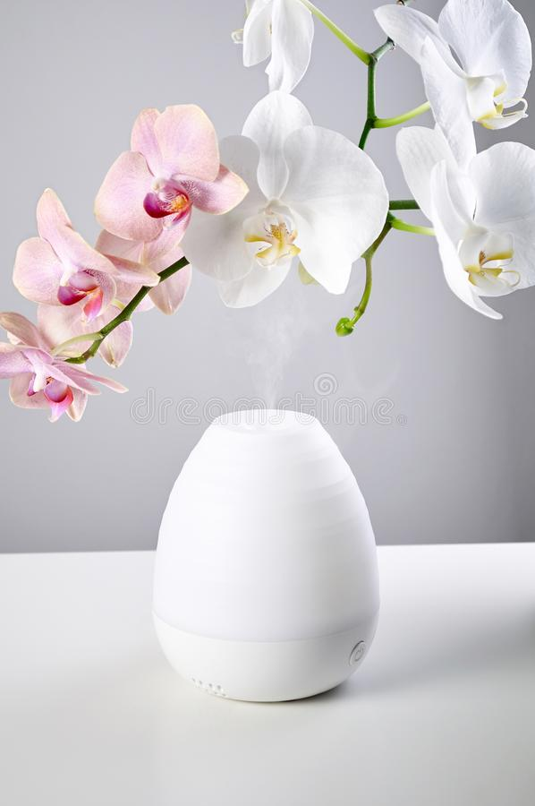 Ultrasonic Oil diffuser and orchid flowers on white table of gray background royalty free stock image