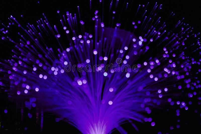Ultraviolet Fiber Optic Lamp Light. With flared stems and violet colors and bokeh on tips royalty free stock photo