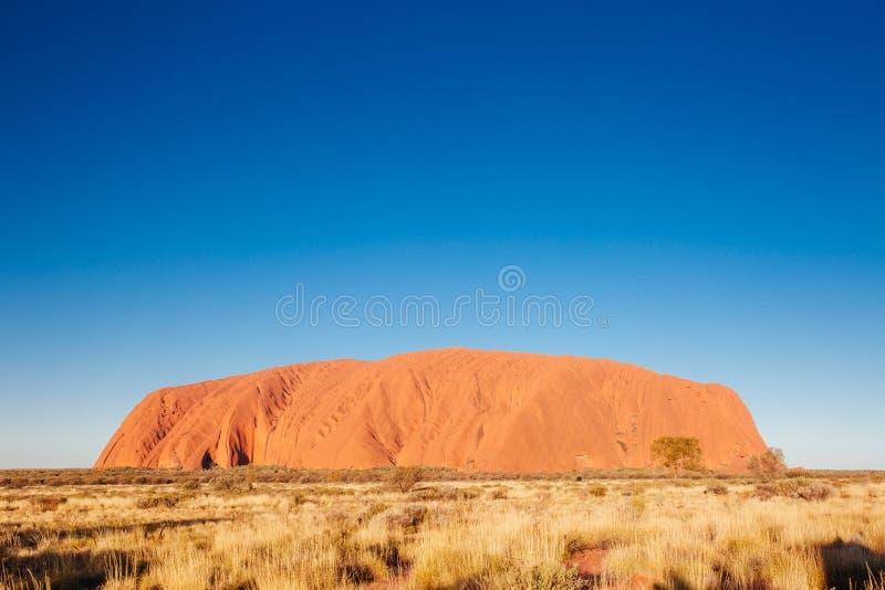Uluru на заходе солнца стоковая фотография rf