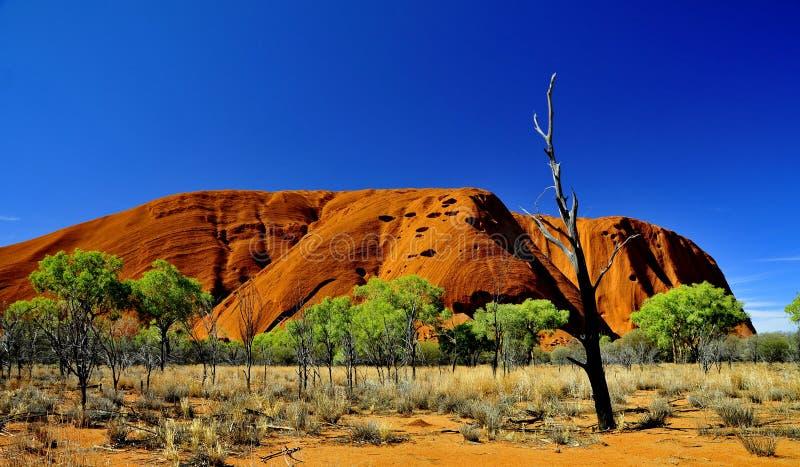 Uluru стоковые фотографии rf