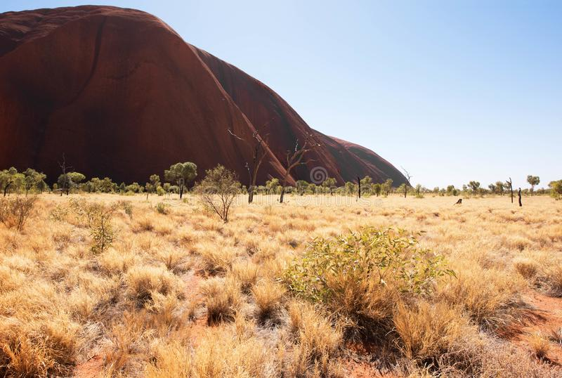 Uluru Ayers Rock, Northern Territory, Australia royalty free stock photography
