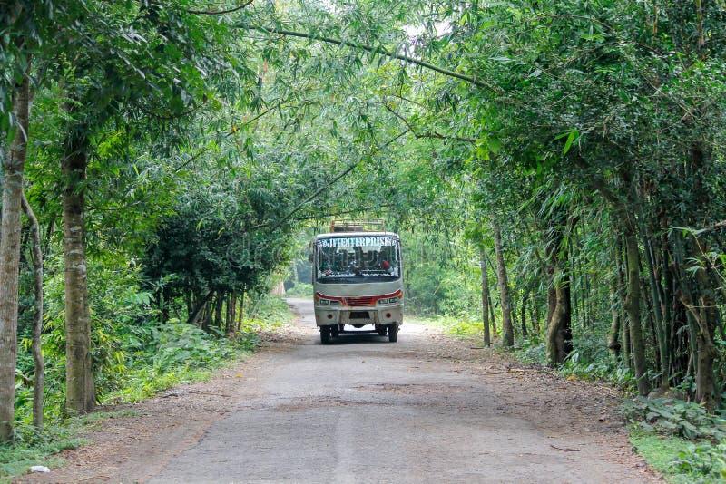 Um ônibus que corre em uma estrada rural fotografia de stock royalty free