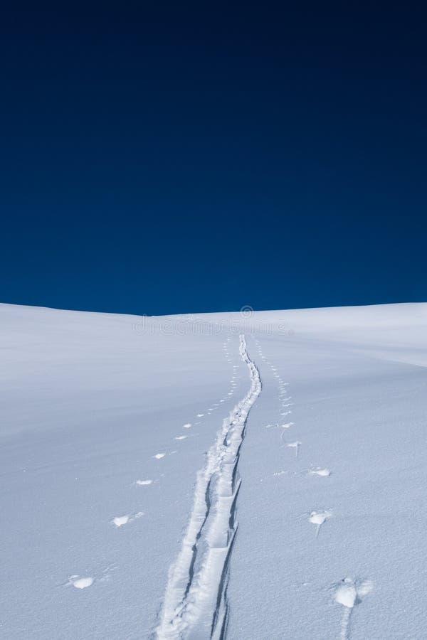 Um único esqui que visita a trilha que conduz na distância no inverno fotos de stock royalty free