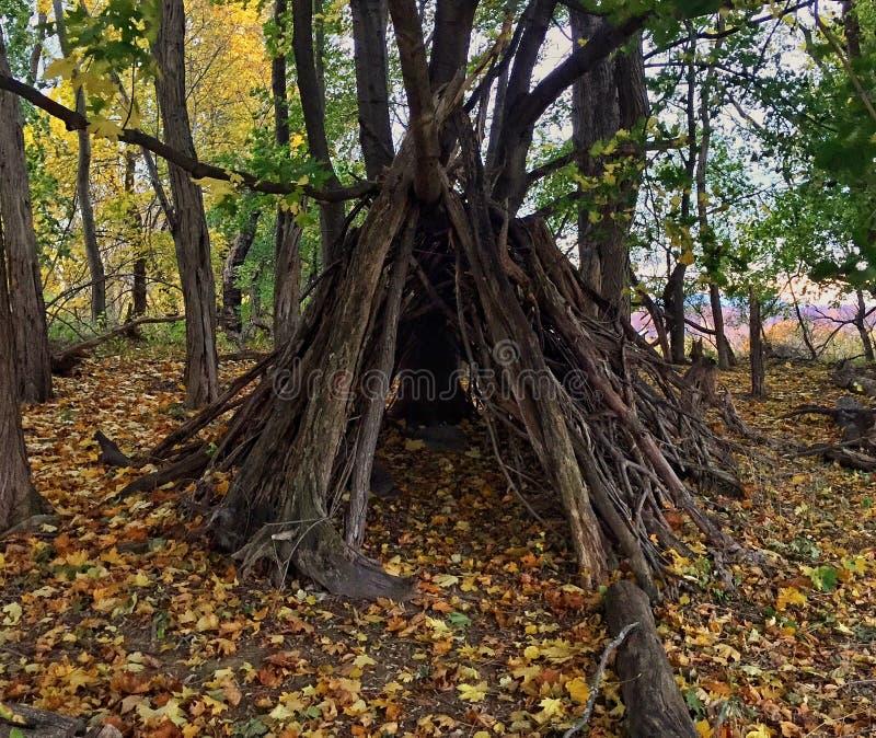 Um abrigo na floresta foto de stock