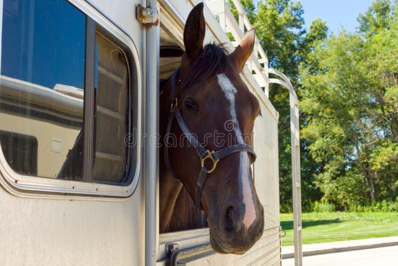 Um acampamento indo do cavalo em wyoming imagens de stock royalty free