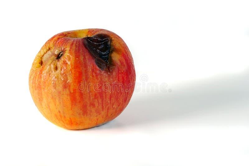 Um Apple ruim imagem de stock royalty free