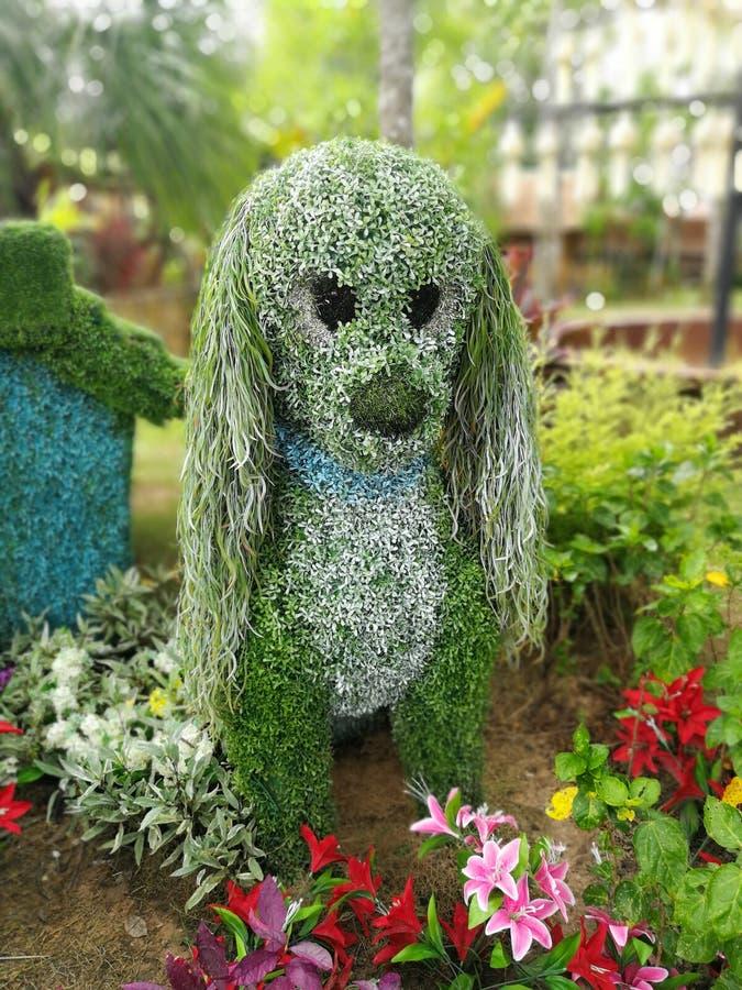 Um arbusto dado forma animal nos jardins, a árvore é aparado ao foto de stock royalty free
