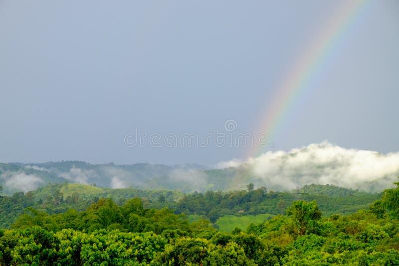 Um arco-íris que ocorresse após a chuva, que ocorre na floresta na montanha foto de stock