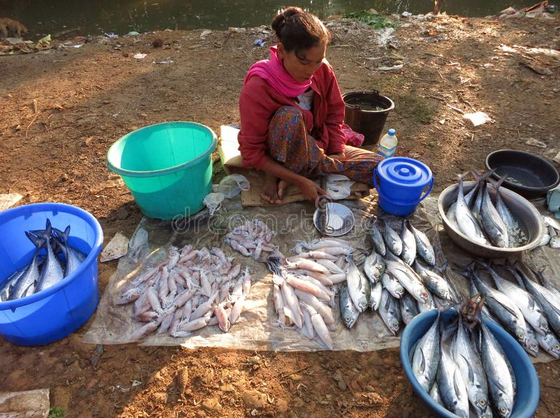 Um assento na mulher à terra vende peixes no mercado da manhã perto do rio fotos de stock royalty free