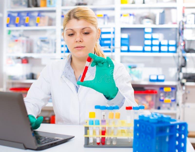 Um assistente de laboratório da mulher usa um samp do sangue da pesquisa do computador imagem de stock