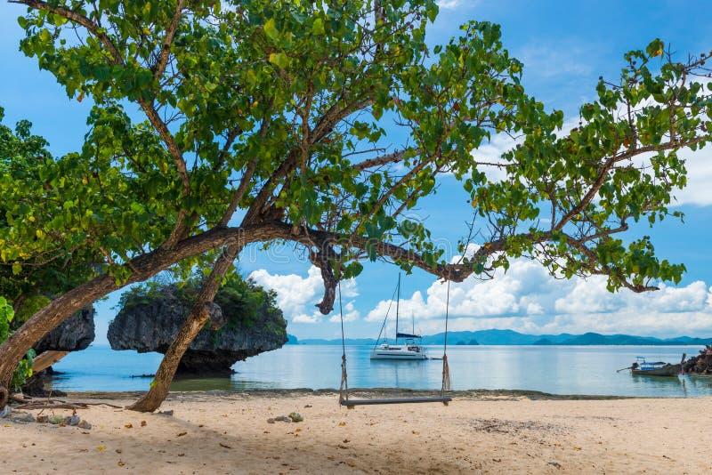 Um balanço em uma árvore na praia de uma ilha desinibido em tailandês imagens de stock royalty free