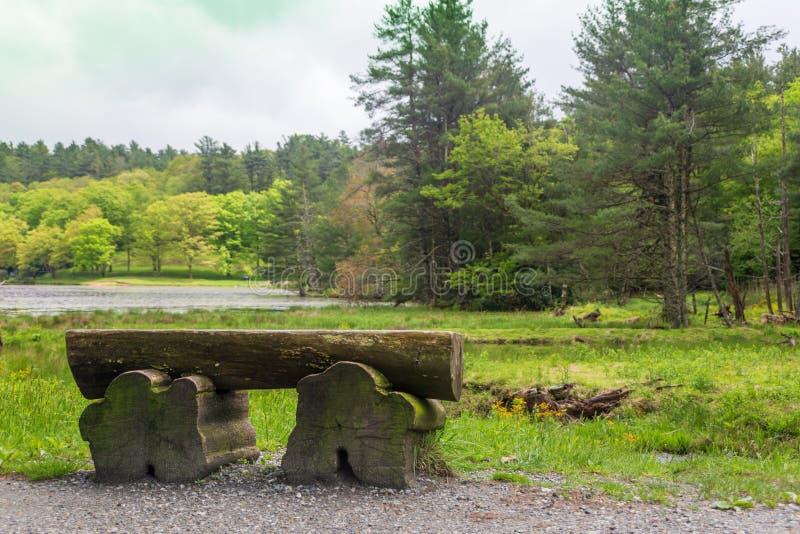 Um banco de madeira na caminhada em torno de Bass Lake imagens de stock