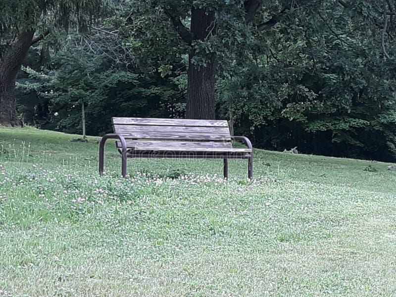 Um banco senta vazio perto das árvores no parque imagens de stock royalty free