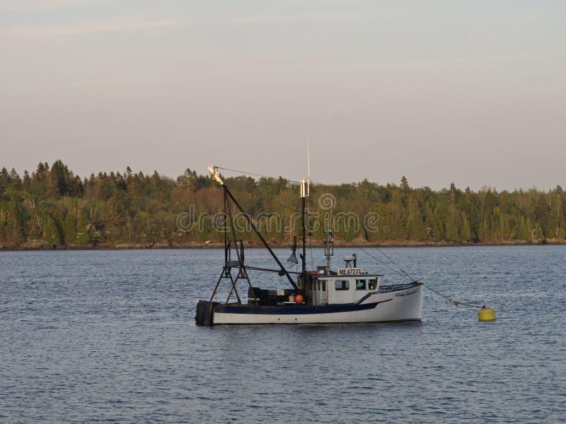 Um barco de pesca em um lago com uma floresta de árvores coníferas atrás dela fotografia de stock