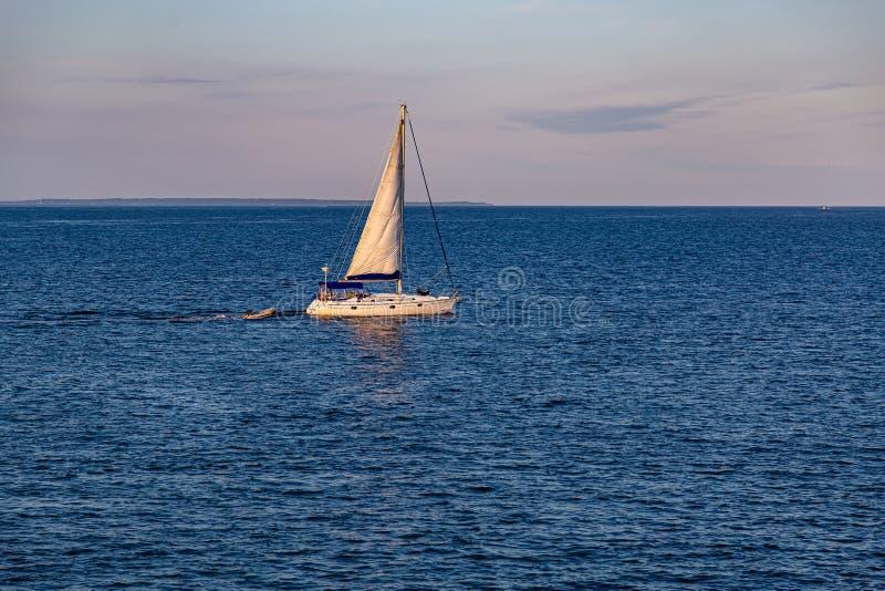Um barco a vela na baía de Vineyard Haven Martha's Vineyard imagem de stock