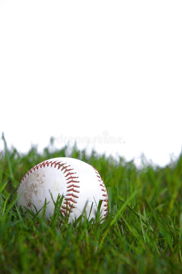 Um basebol na grama imagem de stock royalty free