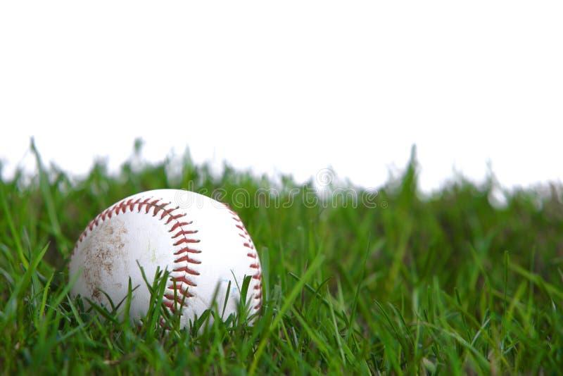Um basebol na grama fotografia de stock
