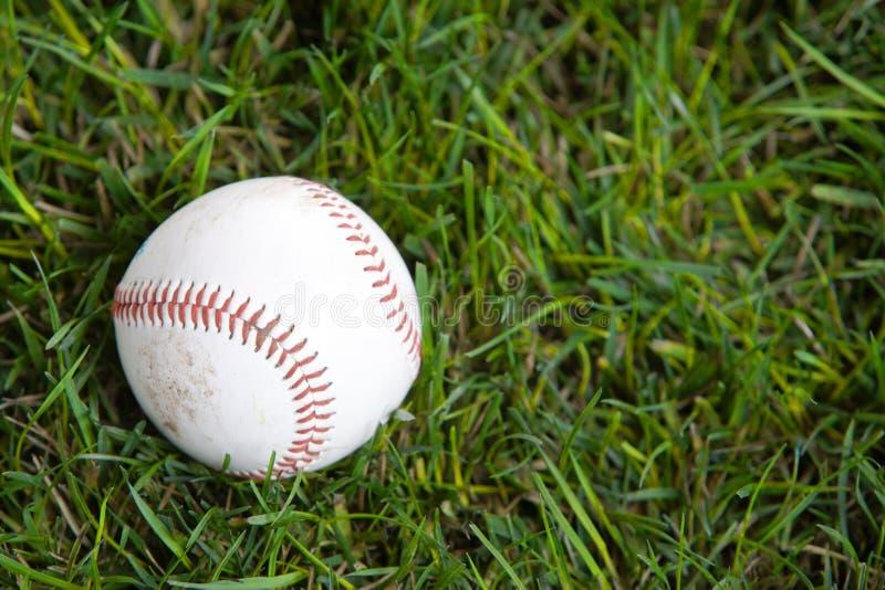 Um basebol na grama fotos de stock royalty free