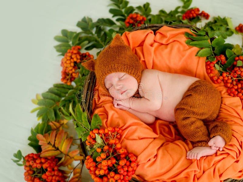 Um bebê recém-nascido encontra-se em uma cesta com Rowan fotografia de stock royalty free