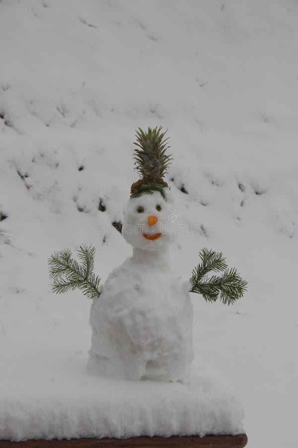 Um boneco de neve engra?ado foi feito da neve fotos de stock royalty free