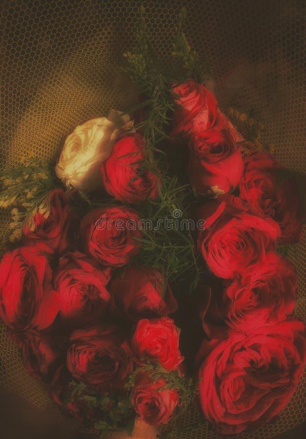 Um boquet de rosas bonitas foto de stock royalty free
