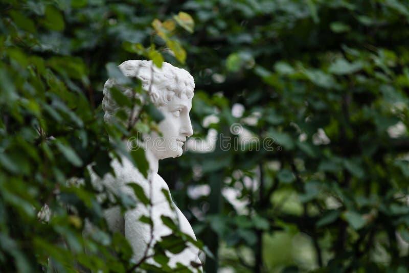 Um busto de mármore dentro entre as folhas fotografia de stock