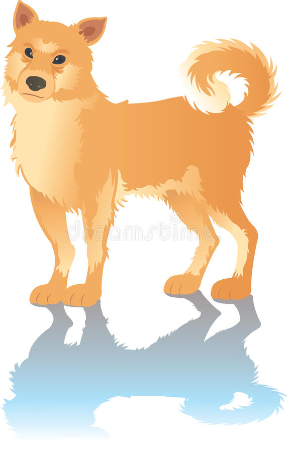 Um cão com sombra imagem de stock