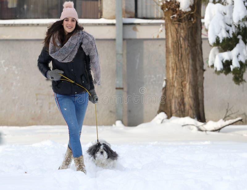 Um cão de sorriso do shih-tzu do whit da menina fotos de stock royalty free