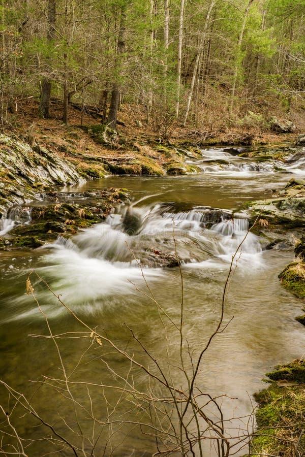 Um córrego da truta da montanha em Ridge Mountains azul de Virgínia, EUA imagens de stock
