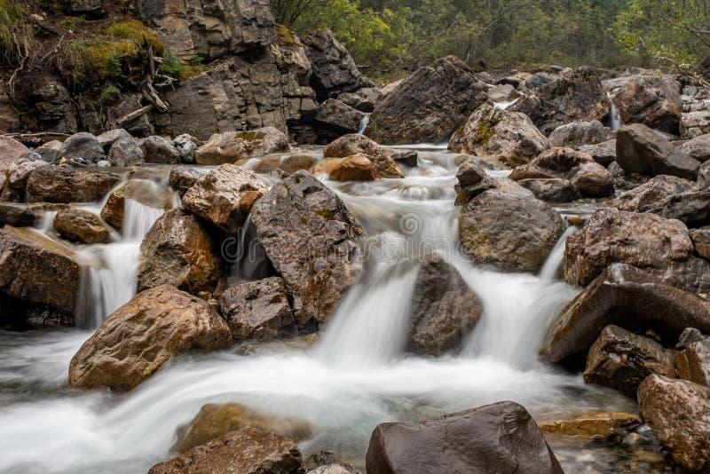 Um córrego de conexão em cascata da montanha dobra-se e tece-se em torno das rochas e dos pedregulhos, exposição longa para criar fotos de stock