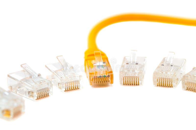 Um cabo de fio dos ethernet e uma cabeça de cabo na cabeça rj45, rede, RJ45, tomada Isolado fotografia de stock royalty free