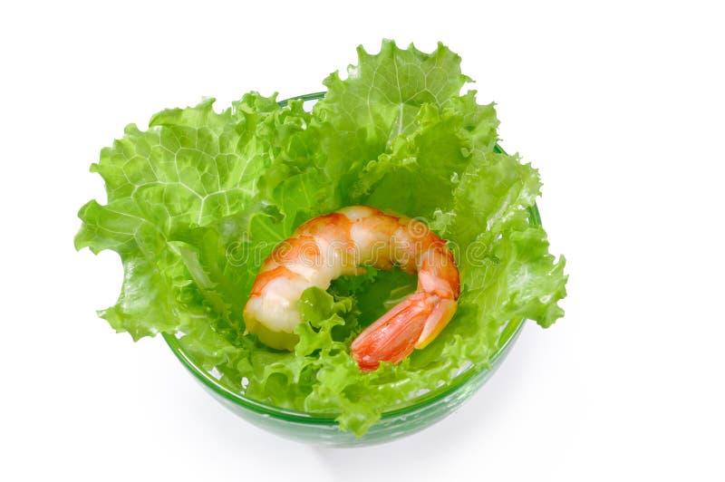 Um camarão descascado cozinhado grande na alface sae na bacia de vidro sobre fotografia de stock