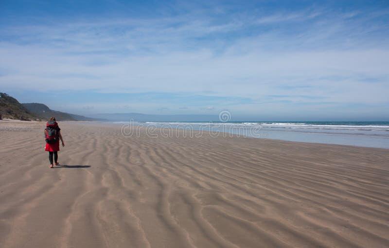 Um caminhante da mulher que anda em uma praia com sua trouxa na trilha de Humpridge no Fiordland/Southland na ilha sul em novo fotos de stock royalty free