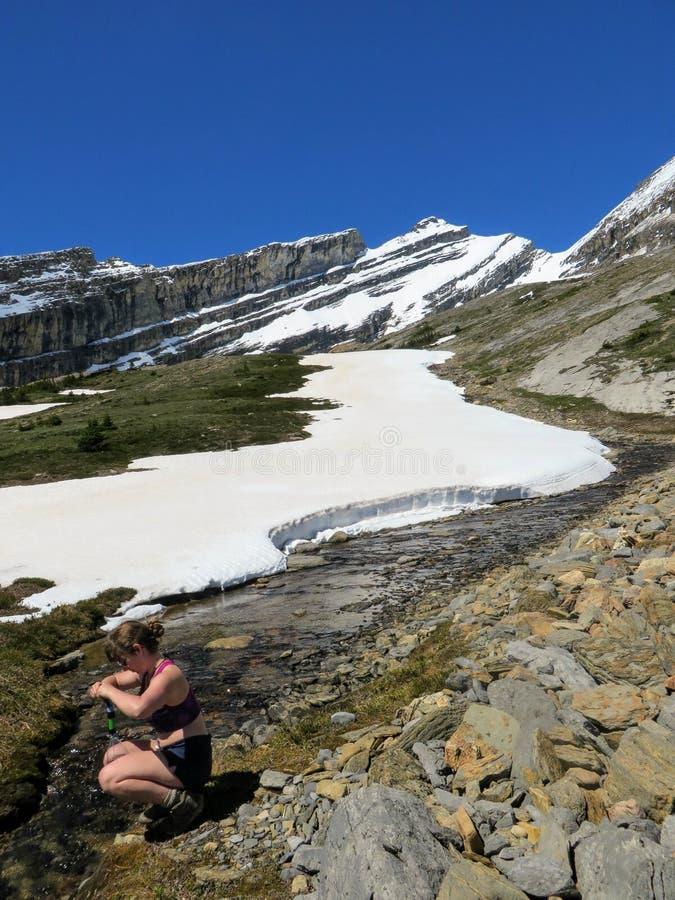 Um caminhante novo que recolhe alguma água fresca do snowmelt de fotografia de stock royalty free