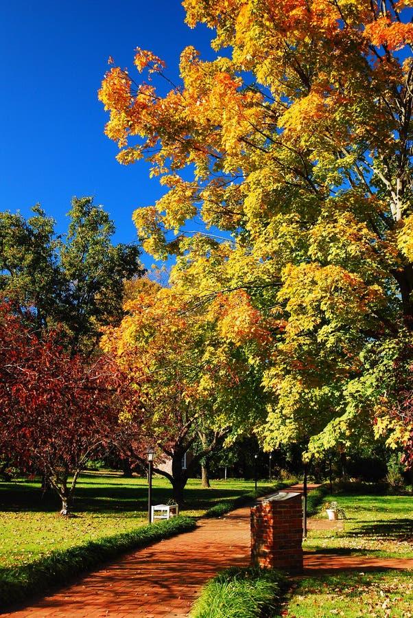 Um caminho de tijolos leva a folhagem colorida de outono imagem de stock