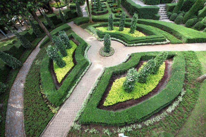Um campo de anel com as árvores figuradas no jardim botânico tropical de Nong Nooch perto da cidade de Pattaya em Tailândia imagens de stock