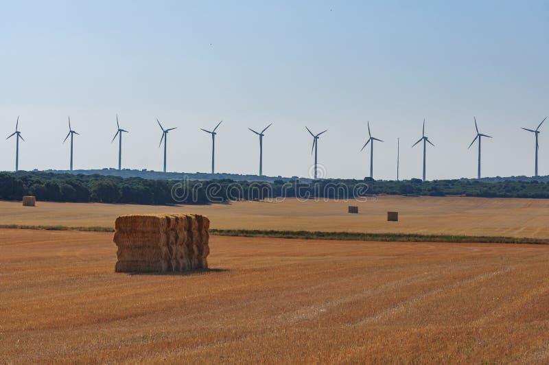 Um campo de exploração agrícola do campo com pacotes e turbinas eólicas da palha no fundo imagem de stock royalty free