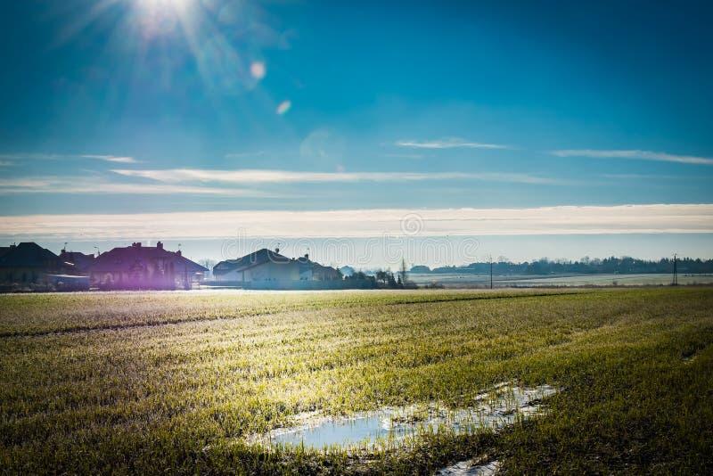 Um campo verde durante o inverno a saltar transição, com wa congelado fotos de stock royalty free
