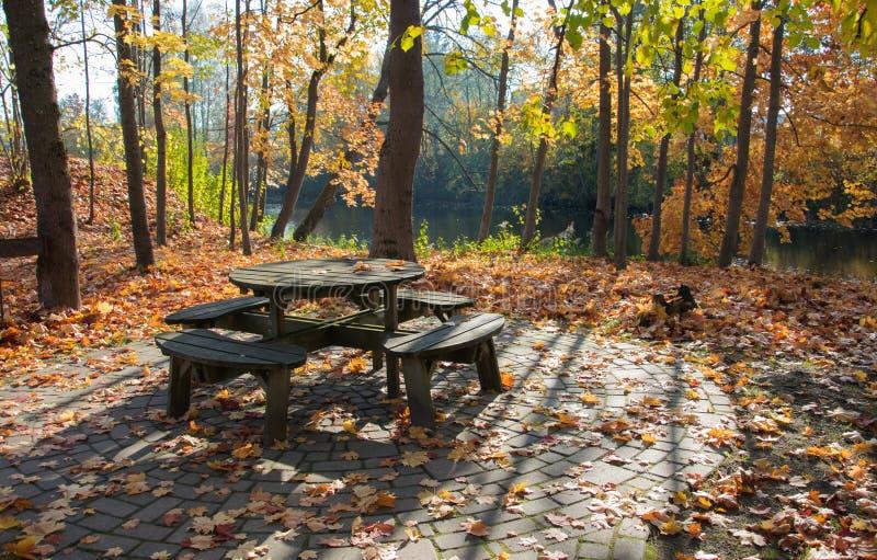 Um canto acolhedor para relaxar no parque do outono em um dia ensolarado brilhante Outono dourado fotografia de stock