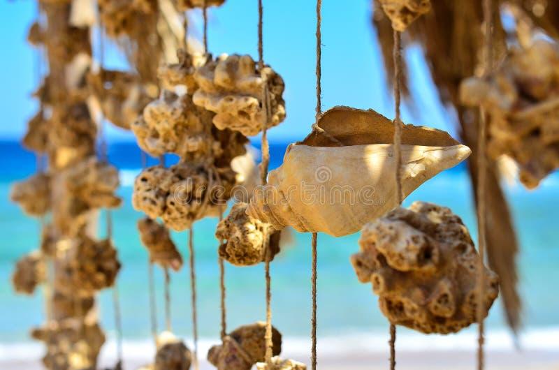 Um carport com uma festão do coral e dos shell fotografia de stock royalty free
