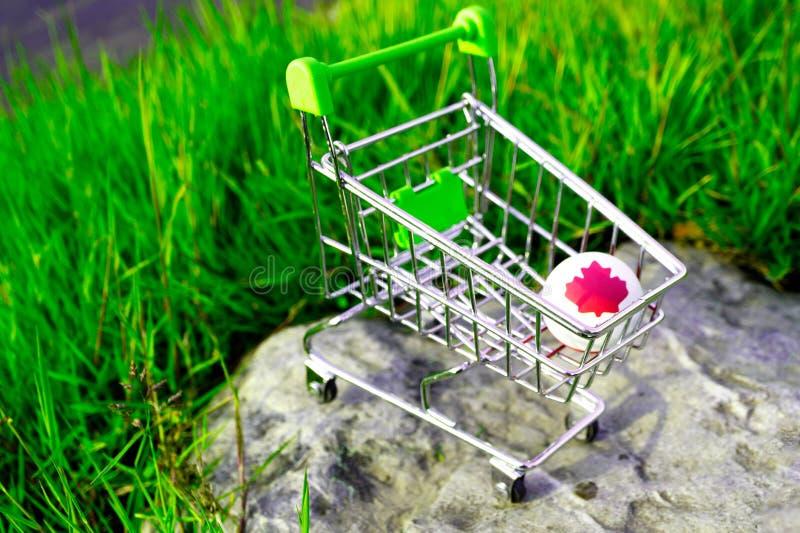 Um carrinho de compras em que está uma bola de borracha com uma folha de bordo vermelha imagens de stock