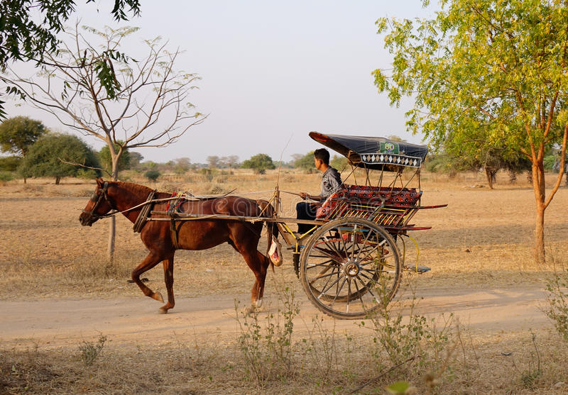 Um carro do cavalo de equitação do homem na rua em Bagan, Myanmar foto de stock
