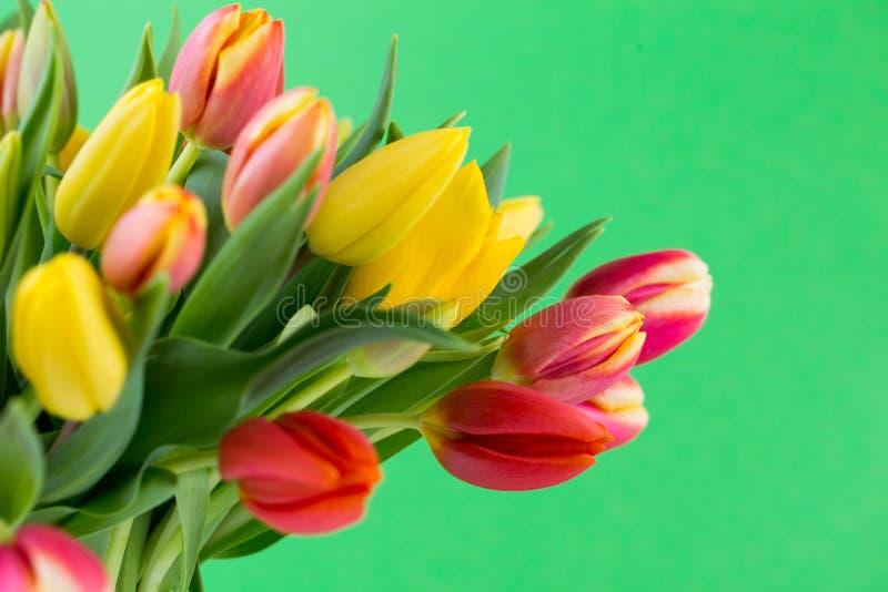 Um cartão de cumprimentos colorido da mola com as tulipas para a Páscoa, ` da mãe foto de stock
